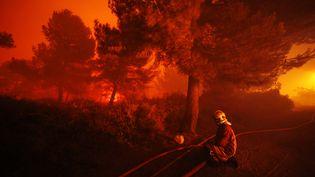 Un pompier lutte contre les flammes, le 11 août 2016, dans le nord de Marseille (Bouches-du-Rhône). (MAXPPP)