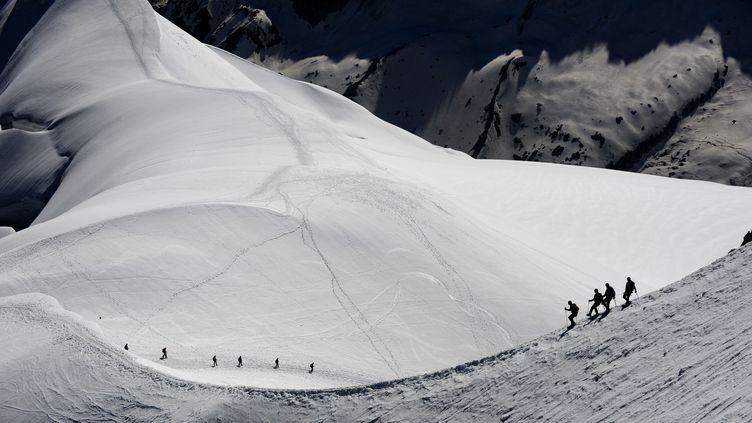 Des alpinistes sur le massif du Mont Blanc, le 26 juin 2016 (illustration). (JEAN-PIERRE CLATOT / AFP)