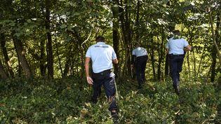 Des gendarmes participent aux recherches de Maëlys, à Pont-de-Beauvoisin (Isère), le 29 août 2017. (PHILIPPE DESMAZES / AFP)