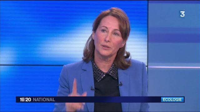 Nucléaire : Ségolène Royal fâche les écologistes