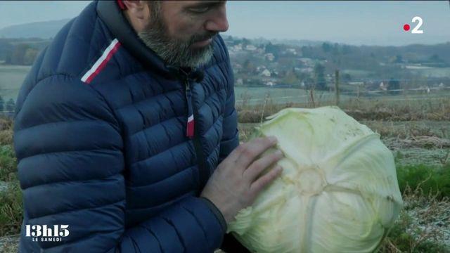 """VIDEO. """"Je pense que la plupart des cuisiniers ont une âme paysanne"""" : le chef étoilé Christophe Aribert engagé pour une gastronomie durable"""