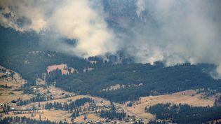 Un feu de forêt lié à la vague de chaleur, le 1er juillet 2021 à Lytton en Colombie-Britannique (Canada). (DARRYL DYCK / THE CANADIAN PRESS / AP)