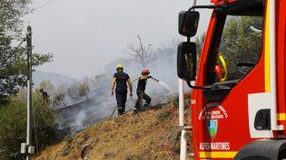 Des pompiers luttent contre un feu de brousailles à proximité de Cannes (Alpes-Maritimes), mardi 1er août 2017. (MAXPPP)