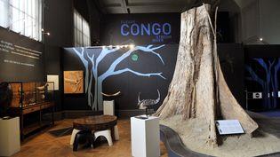 Exposition sur le Congo au Musée de l'Afrique centrale (MRAC) à Tervuren, près de Bruxelles, en octobre 2013. Photo d'illustration. (GEORGES GOBET / AFP)