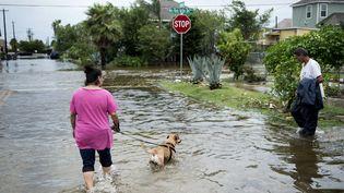 Une femme promène un chien à Galveston, au Texas (Etats-Unis), le 26 août 2017. (BRENDAN SMIALOWSKI / AFP)