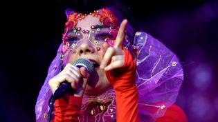 Björk en concert à Berlin, le 2 août 2015  (Britta Pedersen / dpa / picture-alliance / MaxPPP)