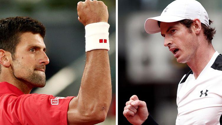 Novak Djokovic, le N.1 mondial, prêt au bras de fer face au N.2 mondial, Andy Murray