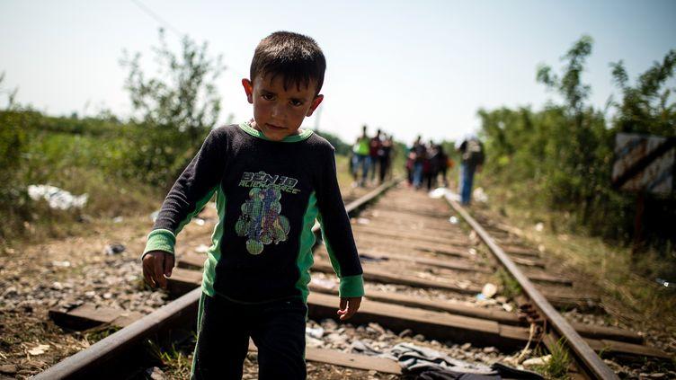Un enfant sur les voies de chemin de fer, près de la ville serbe de Horgos, le 27 août 2015.Les réfugiés cherchent à gagner la Hongrie qui érige un mur anti-immigration de 175 km le long de la frontière avec la Serbie. (ANDREJ ISAKOVIC / AFP)