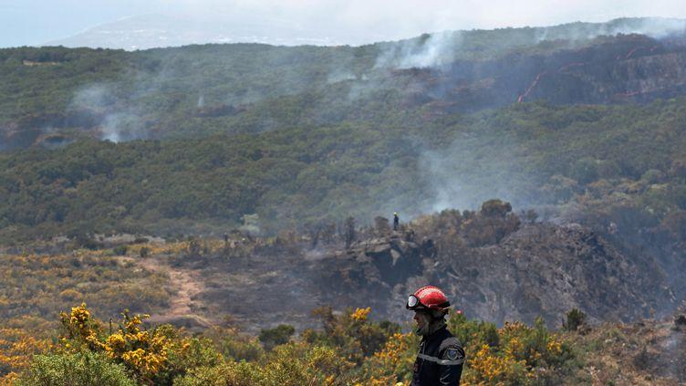 Un pompier dans le Cirque de Mafate (île de La Réunion), le 31 octobre 2011. (RICHARD BOUHET / AFP)