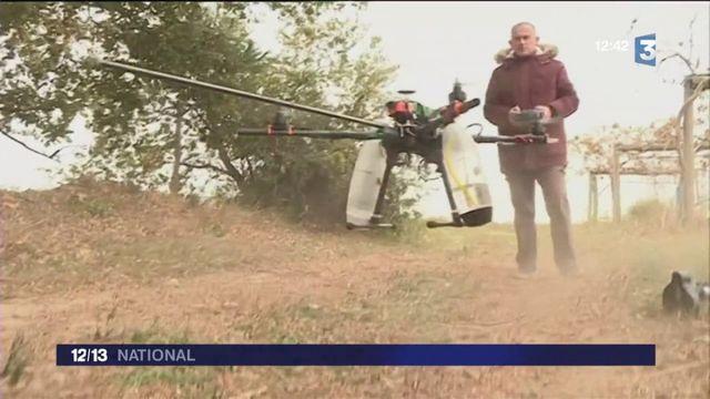 Attila, le drone tueur de frelons