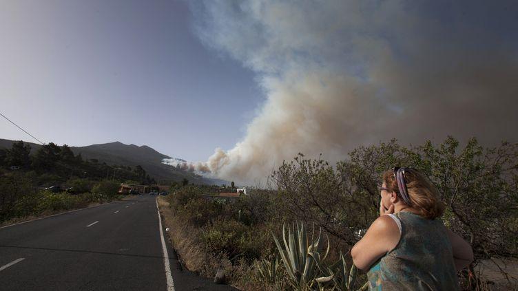 Une femme regarde l'incendie qui a ravagé au moins 1000 hectares sur l'île de La Palma, dans l'archipel des Canaries (Espagne), le 4 août 2016. (DESIREE MARTIN / AFP)