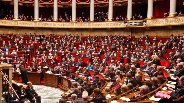 L'hémicycle de l'Assemblée nationale, à Paris, le 13 janvier 2015. (JALLAL SEDDIKI / CITIZENSIDE.COM / AFP)