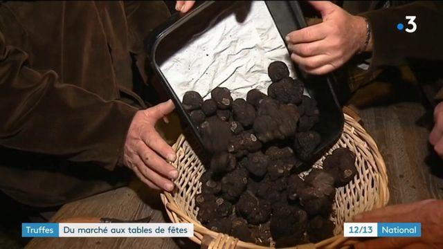Truffes : du marché aux tables de fêtes