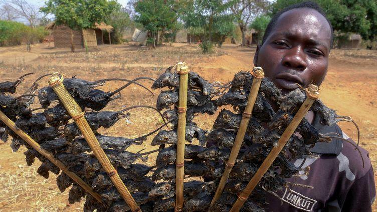 Un homme vend des brochettes de souris le long de la route Lilongwe-Blantyre dans le district de Ntcheu, région orientale du Malawi, le 24 août 2020.  (- / AFP)