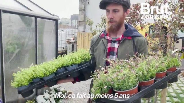 Pour sauver les plantes et les fleurs du gaspillage et de l'abandon, Nicolas a eu une idée : il a créé la Société Protectrice des Végétaux.