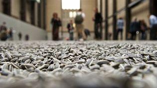 """""""Sunflower Seeds"""", installation d'Ai Weiwei constituée de millions de graines de tournesol, à la Tate Modern de Londres (octobre 2010)  (Leon Neal / AFP)"""