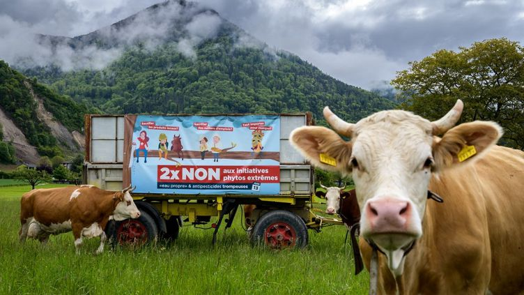 Une banderole déployée par un agriculteur partisan du non, le 19 mai 2021 à Ollon (Suisse). (FABRICE COFFRINI / AFP)