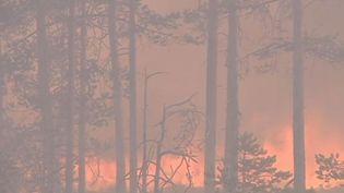 Climat : feux de forêts en Suède (France 2)