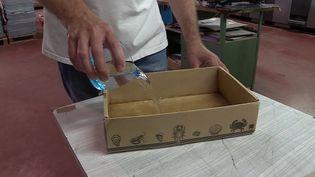 Pratique et en matières recyclées, ce carton est aussi étanche et peut se substituer à de nombreux usages du plastique. (France 3 Nouvelle-Aquitaine)