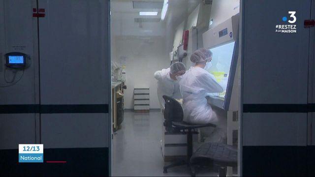 Coronavirus : l'Institut Pasteur de Lille en quête d'un antidote
