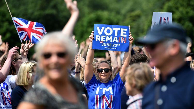 """Une femme tient une pancarte """"Votez le maintien"""", à Londres le 19 juin 2016. (BEN STANSALL / AFP)"""