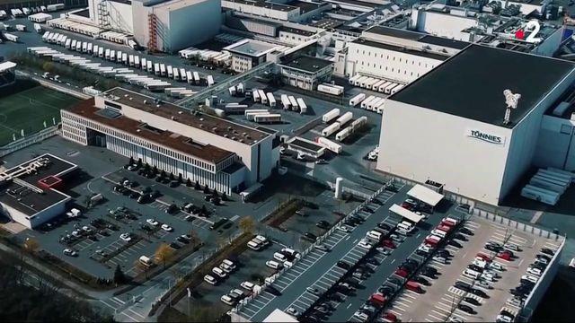 Allemagne : le plus grand abattoir d'Europe touché par le coronavirus
