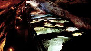 La grotte de la Cocalière, dans les Cévennes, ici photographiée en 2015. (ALEX BAILLAUD / MAXPPP)