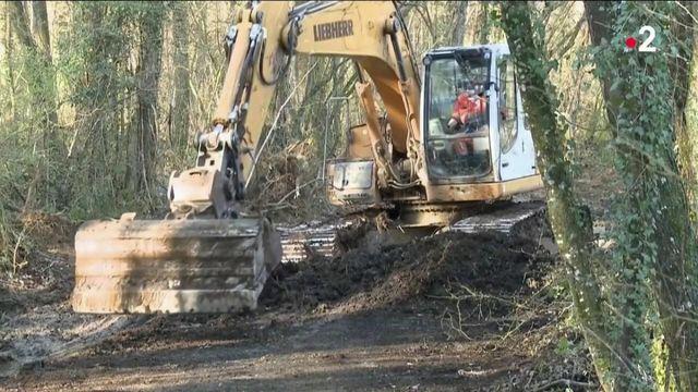 Disparition d'Estelle Mouzin : de nouvelles fouilles sont en cours dans les Ardennes