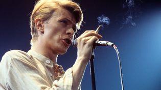 David Bowie se produit à Francfort, en Allemagne, le 14 may 1978. (HANS H. KIRMER / DPA / AFP)
