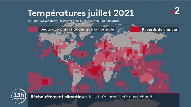 Climat : tous les voyants sont au rouge après un mois de températures record