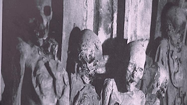 Les momies de Saint-Michel exhumées grâce au documentaire projeté à la crypte de la Flèche Saint-Michel  (France3 / Culturebox)