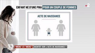 """Le termes """"mère"""" et """"mère"""" apparaitront à l'état civil, pour les enfants nés par PMA au sein d'un couple de femmes. (FRANCE 2)"""
