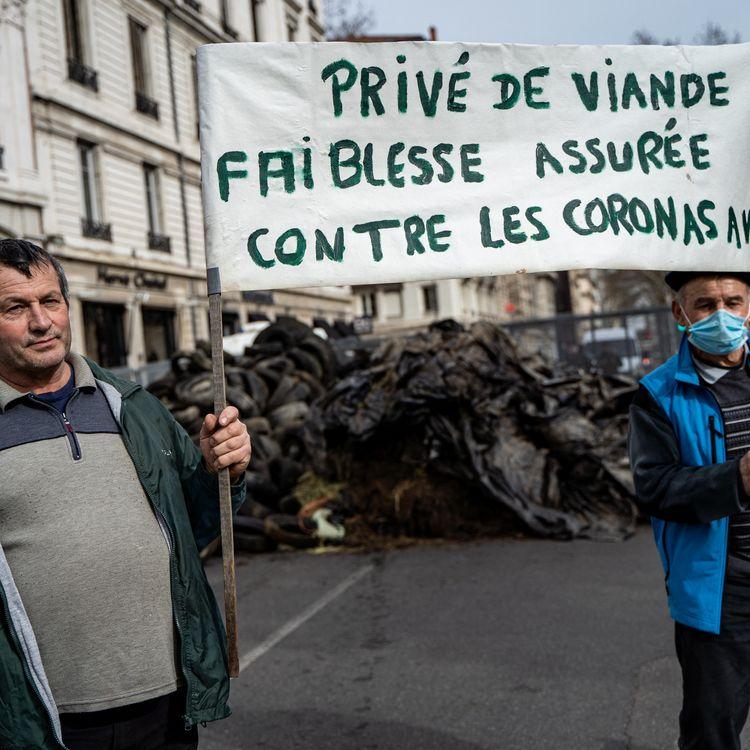 Des agriculteurs manifestent à Lyon (Rhône), lundi 22 février 2021. (NICOLAS LIPONNE / HANS LUCAS / AFP)