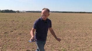 Smartphone à la main, Luc Lorin sonde ses cultures pourpouvoir anticiper tout problème. (France 3 Centre-Val-de-Loire)