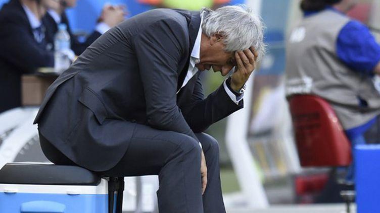 """Vahid Halilhodzic a regretté de ne pas avoir """"tué"""" le match. (PHILIPPE DESMAZES / AFP)"""