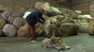 La laine s'entasse dans cet entrepôt de Picardie (France 3 Toutes régions)