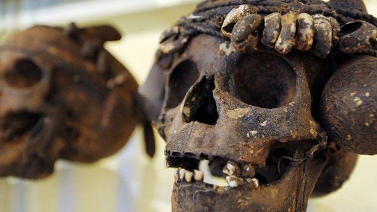 Crânes de sorciers bonoko, Collection Marc Arbogast  (Frederick Florin / AFP)
