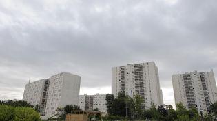 Le quartier des Beaudottes à Sevran (Seine-Saint-Denis), photographié le 16 juillet 2010, est l'un des lieux récurrents du livre. (MIGUEL MEDINA / AFP)