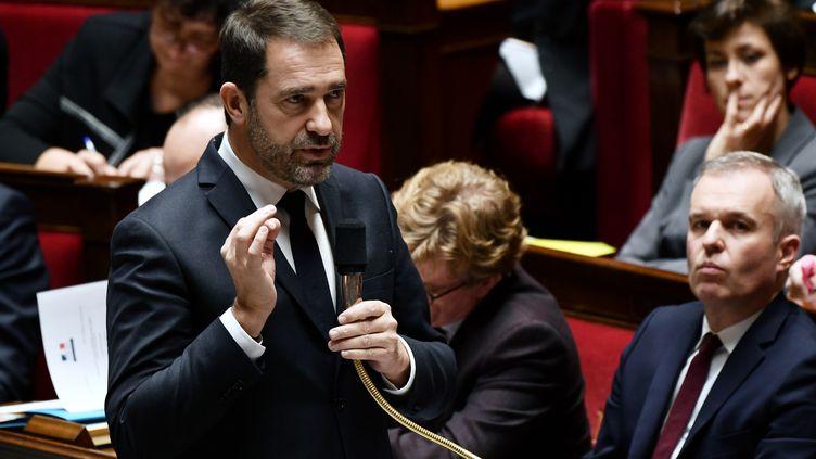 Le ministre de l'Intérieur, Christophe Castaner, s'exprime lors des questions au gouvernement, à l'Assemblée nationale, à Paris, le 29 janvier 2019. (PHILIPPE LOPEZ / AFP)