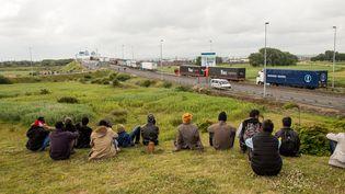 Des migrants assis près de l'A16, à Calais (Pas-de-Calais), le 23 juin 2015. (PHILIPPE HUGUEN / AFP)