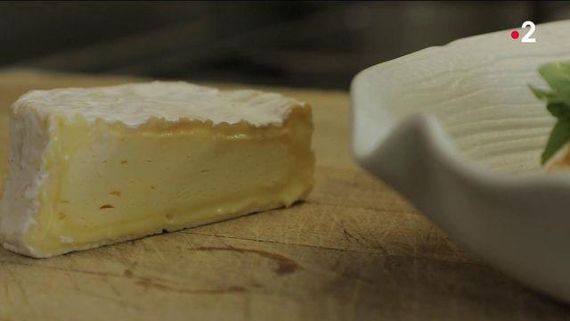 Orne : aux origines du camembert, le fromage à pâte molle préféré des Français