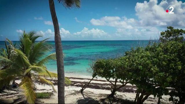 Guadeloupe : un département privé d'eau potable