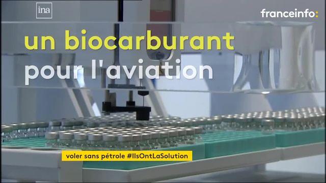 Première mondiale en Champagne : un avion a réussi à voler avec un biocarburant issu de jus de betterave