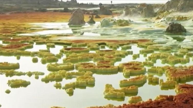 Une équipe de France 2 s'est rendue dans le désert du Danakil, là où le peuple Afar continue de récolter le sel comme au 6e siècle. (FRANCE 2)