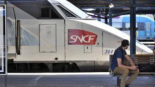 Un mouvement de grève perturbe le trafic SNCF, mercredi 11 juin 2014. ( MAXPPP)