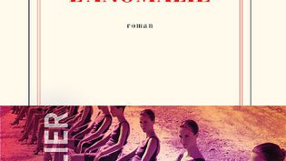 L'anomalie (Gallimard) (L'anomalie (Gallimard))