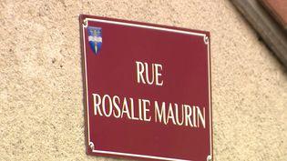 Fini le casse-tête du facteur pour trouver une adresse. À Félines, en Haute-Loire, le maire a décidé de donner un nom à 70 rues, ce qui n'était pas le cas auparavant. Le but est aussi de mettre en avant des personnalités locales. (FRANCE 3)