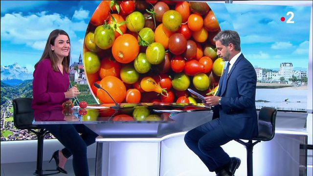 Consommation : comment bien choisir ses tomates ?