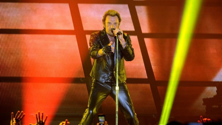 Johnny Hallyday en juin 2013 donne un concert à Bordeaux  (NICOLAS TUCAT / AFP)