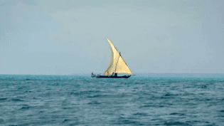 """Image tirée d'une des quatres pièces créées par le groupe Sisygambis pour l'exposition """"Aventuriers des mers, de Sinbad à Marco Polo"""" à l'Institut du monde arabe à Paris  (Culturebox / Capture d'écran)"""